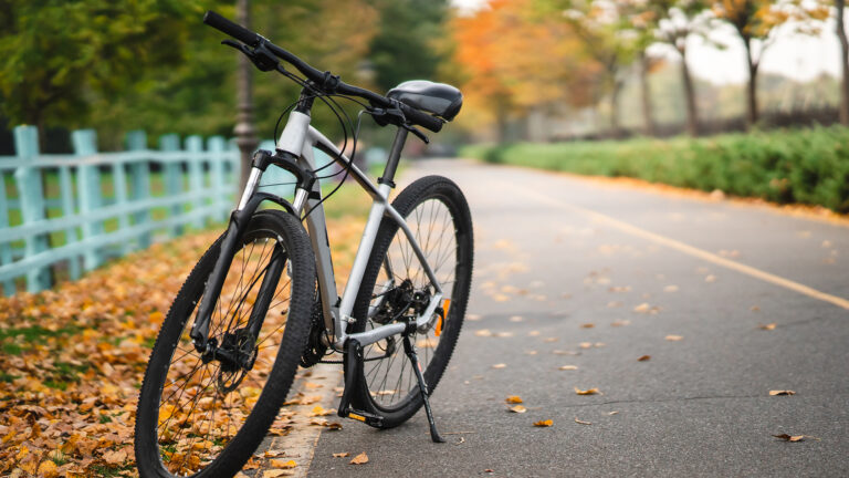 The Patented World of Bicycles – Technological History